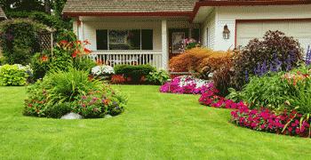 Home & Garden St Francis